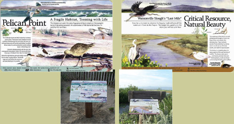 pajaro dunes community panels