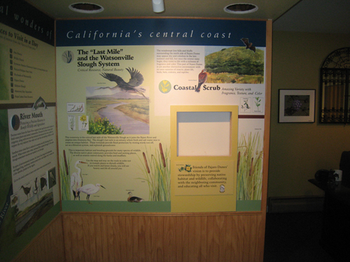 Nature Gallery at Pelican Point