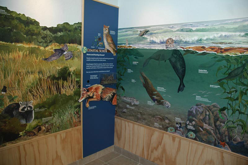 Nature Center at Shorebirds, Panel 2