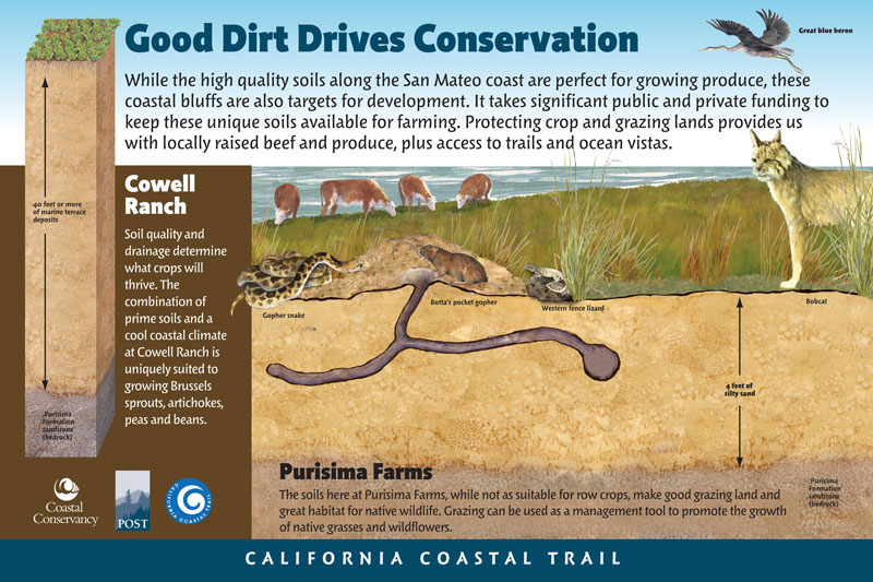 Cowell-Purisima Trail, Good Dirt Drives Conservation Panel