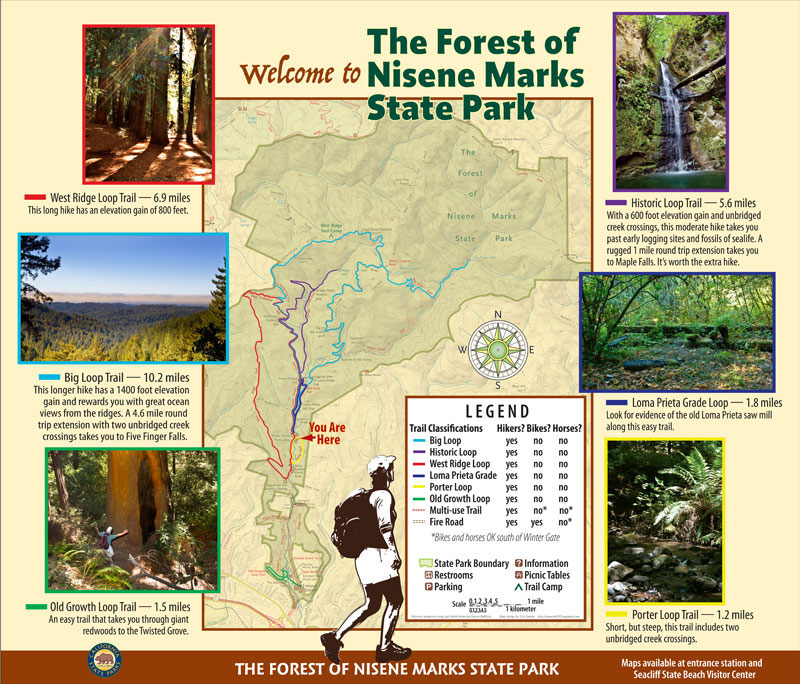Nisene Marks State Park Welcome Panel